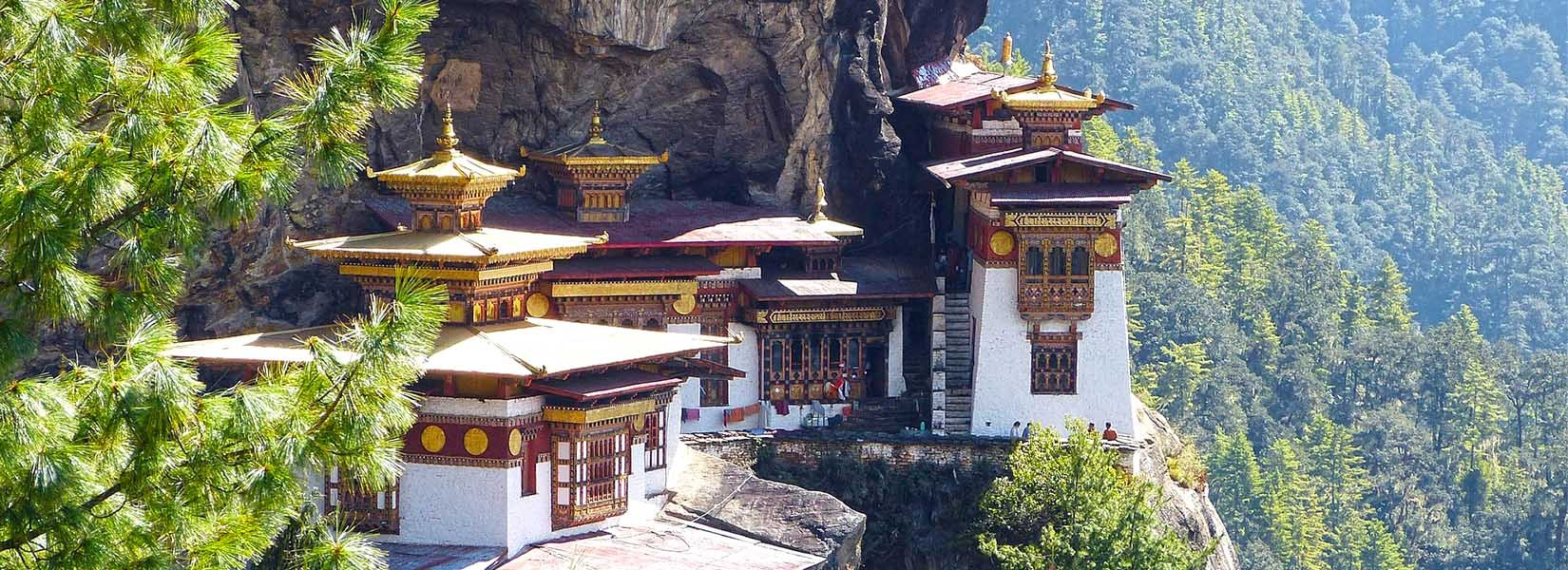 bhutan tour packages from nepal