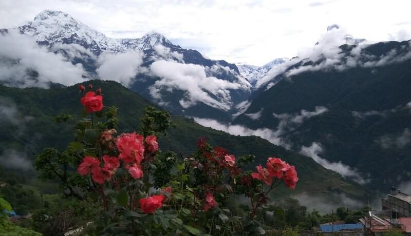 ghandruk trek in spring season nepal